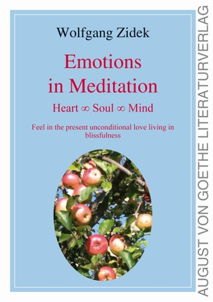 Emotions in Meditation