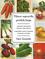 Vilniaus vegetariškų patiekalų knyga. Tradicinė tarpukario Vilniaus žydų virtuvė. Legendinio Fanios Lewando restorano receptai