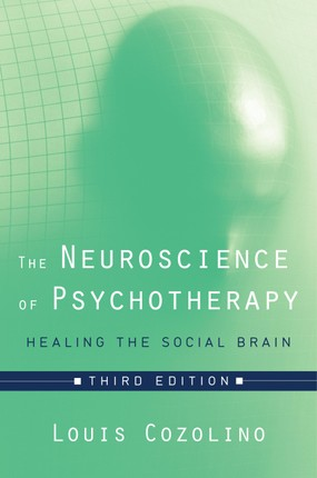The Neuroscience of Psychotherapy: Healing the Social Brain (Third Edition)  (Norton Series on Interpersonal Neurobiology)