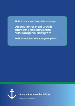 Association of plant growth promoting microorganism with transgenic Blackgram. PGPR association with transgenic plants