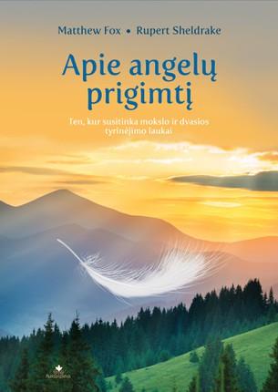 APIE ANGELŲ PRIGIMTĮ: ten, kur susitinka mokslo ir dvasios tyrinėjimo laukai
