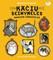 Kačių šeimynėlės smagios išdaigėlės