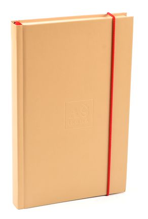 AŠ IKONA. Darbo knyga 2017 - 2018 metams