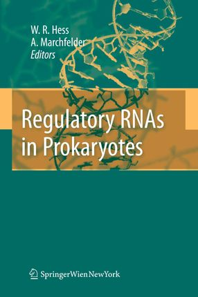 Regulatory RNAs in Procaryotes