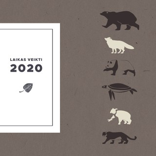 Laikas veikti 2020 m. DK8