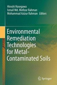 Environmental Remediation Technologies for Metal-Contaminated Soils