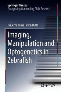 Imaging, Manipulation and Optogenetics in Zebrafish