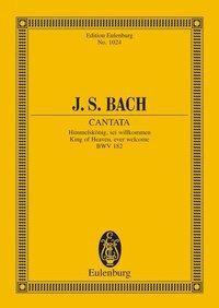 Kantate Nr. 182 (Dominica Palmarum)