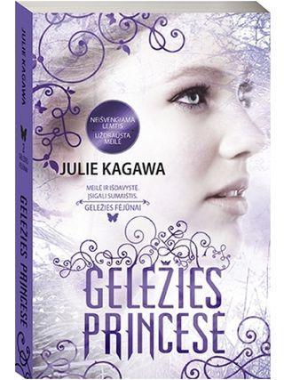 Geležies princesė (Geležies fėjūnai 2-oji knyga)