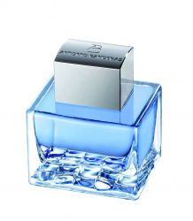 ANTONIO BANDERAS BLUE SEDUCTION tualetinis vanduo, 100ml (EDT)