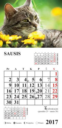 """2017 metų kalendorius su magnetu """"Katinas"""""""