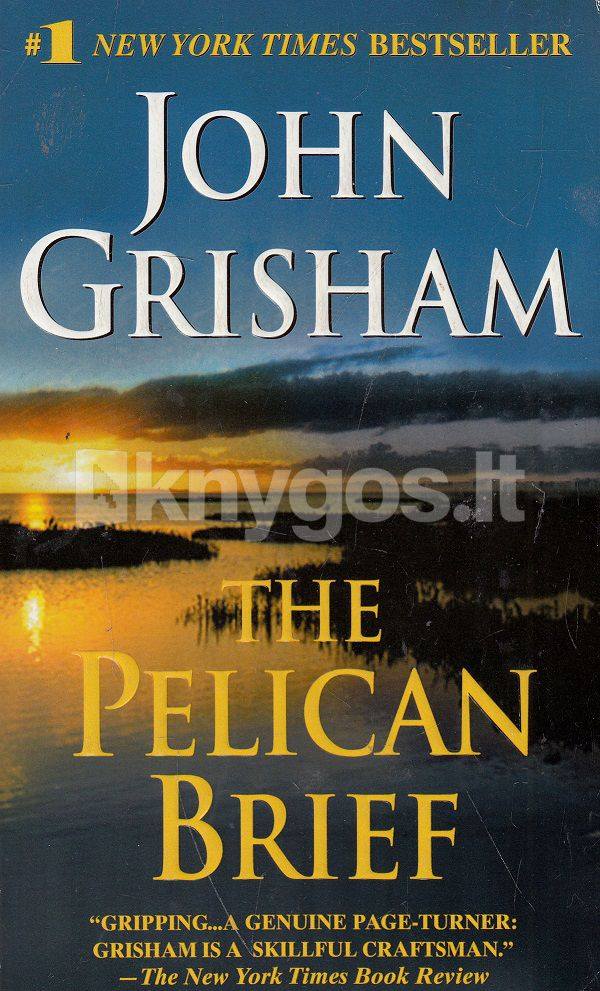 the pelican brief novel