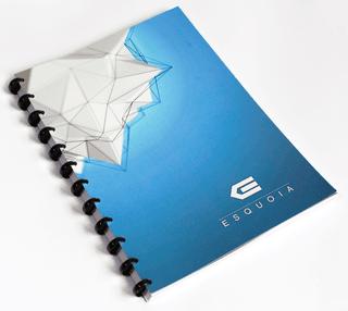 """Daugkartinio naudojimo sąsiuvinis """"ESQUOIA"""". Penklinė. Mėlynas (A4)"""