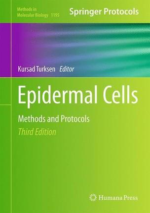 Epidermal Cells