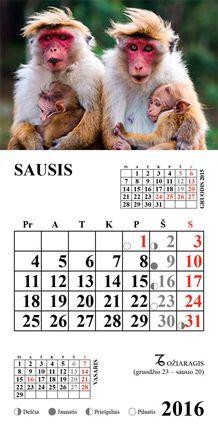 """2016 metų kalendorius su magnetu """"Beždžionės"""""""