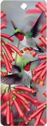 """3D Knygų skirtukas """"Kolibris"""""""