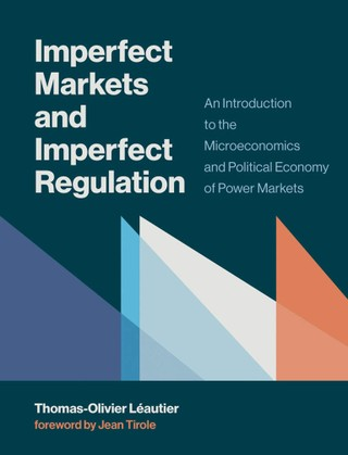 Imperfect Markets and Imperfect Regulation