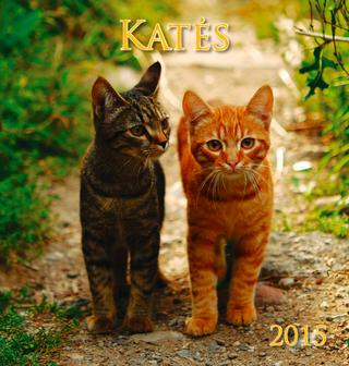 2015 metų kalendorius. Katės