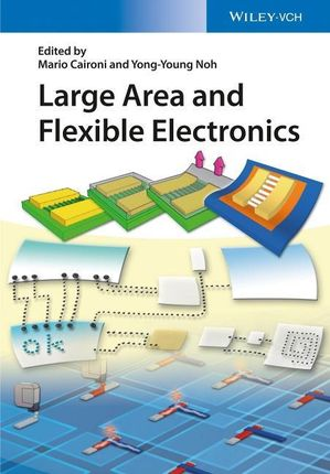 Large Area and Flexible Electronics