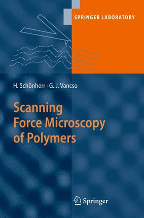 Scanning Force Microscopy of Polymers