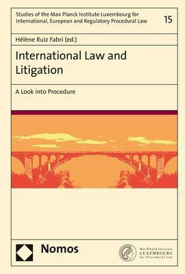 International Law and Litigation