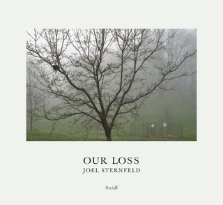 Our Loss