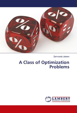 A Class of Optimization Problems