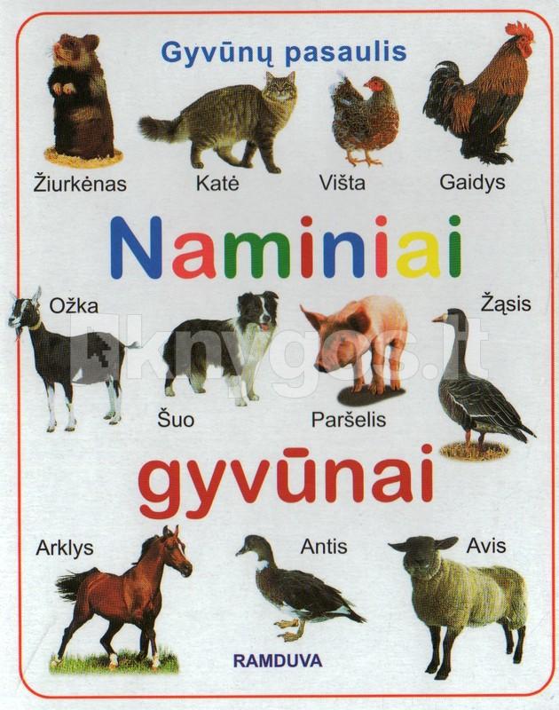 Naminiai gyvūnai - Knygos.lt