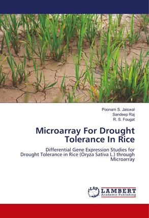 Microarray For Drought Tolerance In Rice