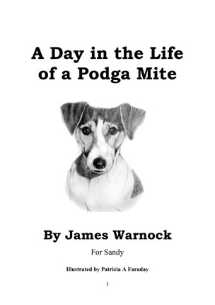 Day in the Life of a Podga Mite