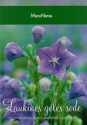 Laukinės gėlės sode