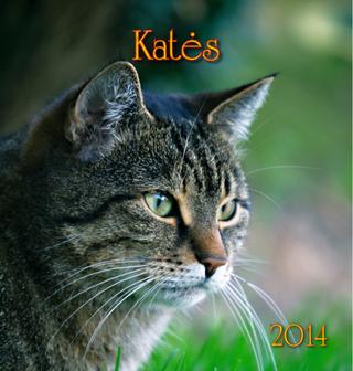 """2014 metų kalendorius """"Katės"""""""