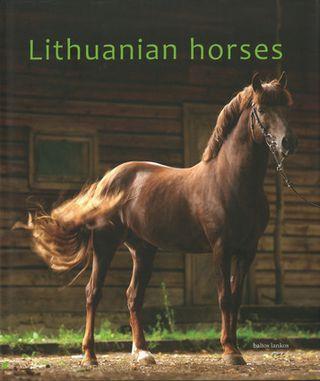Lithuanian Horses