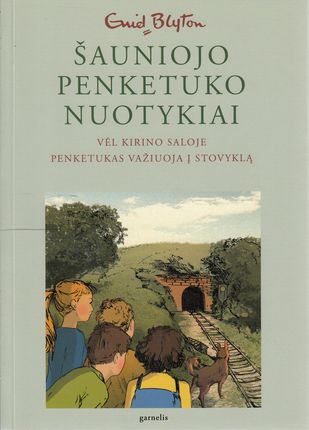 Šauniojo penketuko nuotykiai. 3 knyga. Vėl Kirino saloje. Penketukas važiuoja į stovyklą