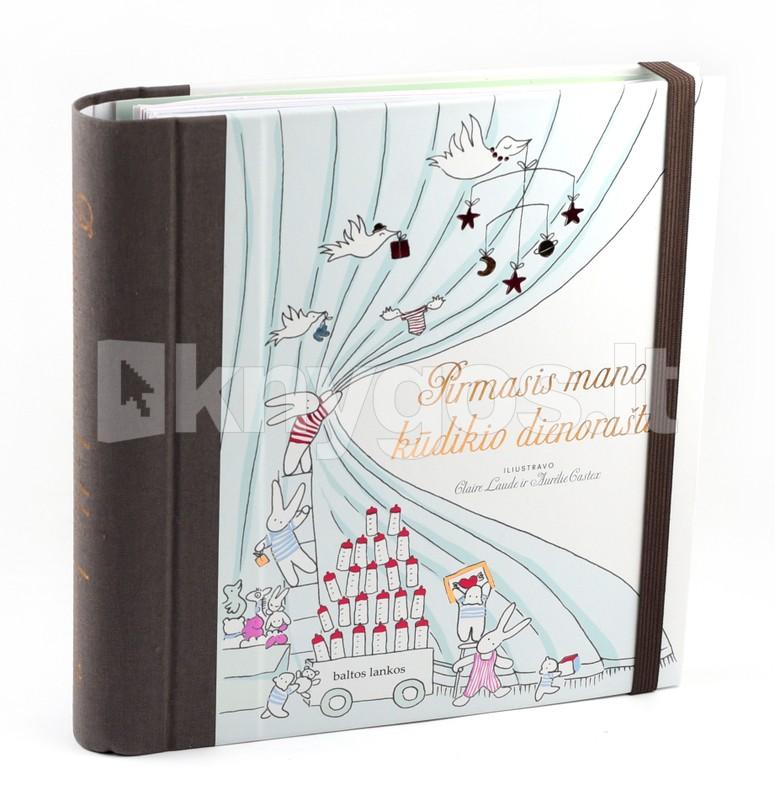 dirbti iš rimto namų dienoraščio