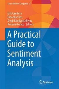 A Practical Guide to Sentiment Analysis