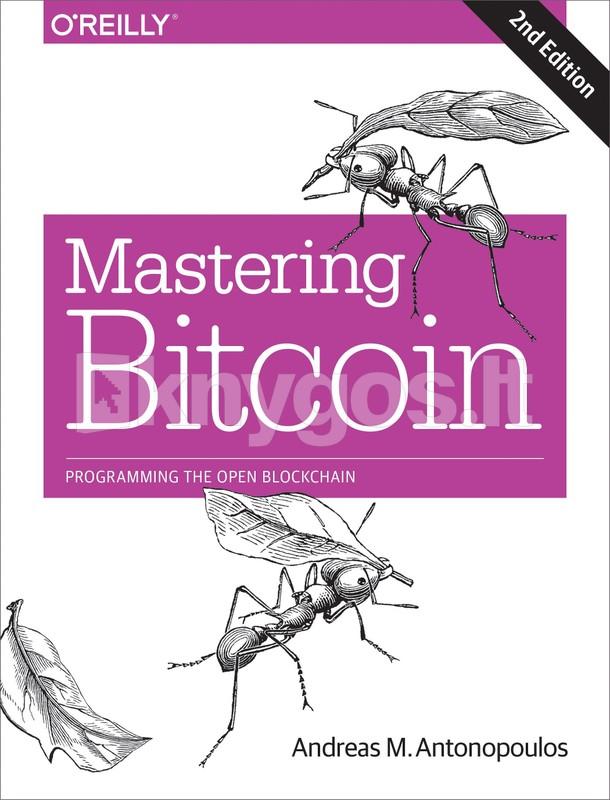 btc matematikos knyga bitcoin santrauka