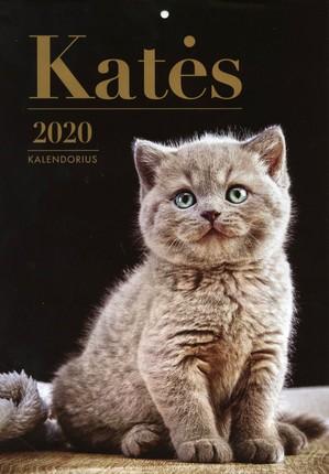 2020 m. kalendorius Katės (A4)