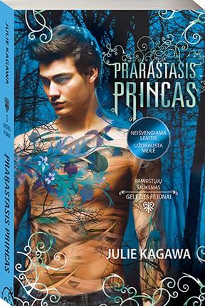 Prarastasis princas (Geležies fėjūnai 5-oji knyga)