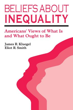 Beliefs about Inequality