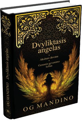 Dvyliktasis angelas