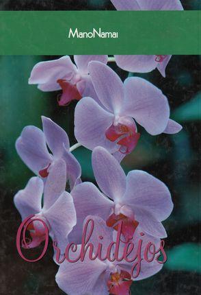 Orchidėjos (Mano namai)