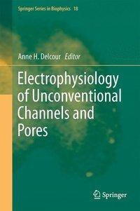 Electrophysiology of Unconventional Channels and Pores