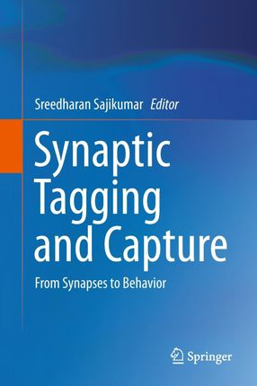 Synaptic Tagging and Capture