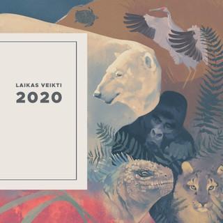 Laikas veikti 2020 m. DK5