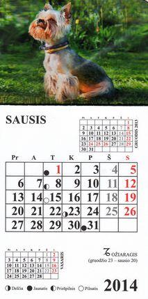 2014 metų magnetinis kalendoriukas su šuniuku