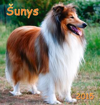 2015 metų kalendorius. Šunys