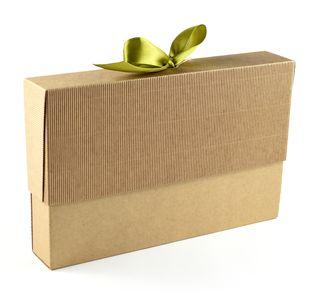 Dėžutė knygoms (ruda, 16 x 25 x 4 cm)