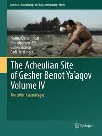 The Acheulian Site of Gesher Benot Ya'aqov Volume IV