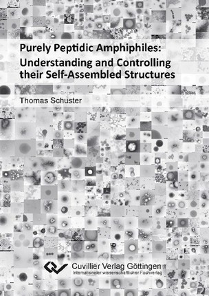 Purely Peptidic Amphiphiles: Understanding and Controlling their Self-Assembled Structures